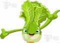 The Slug and Lettuce