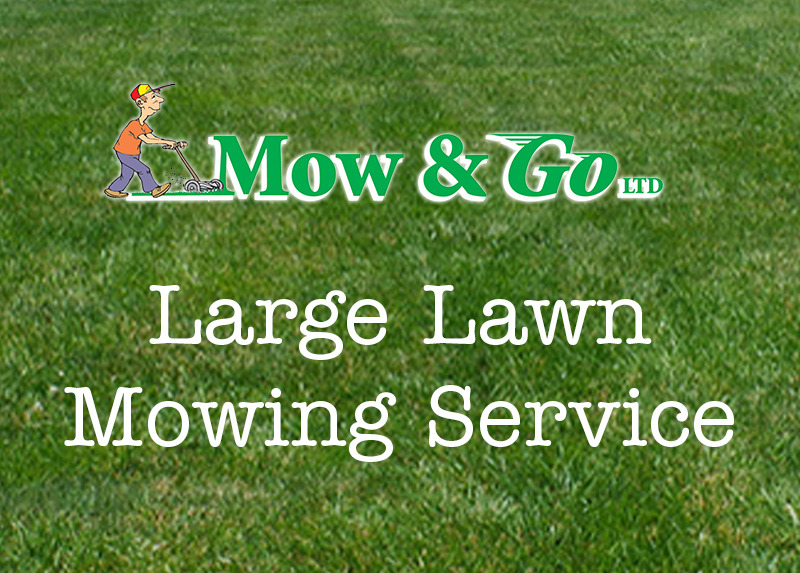 Mow and Go Large Lawn Mowing Service